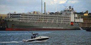Bakanlık İspanya'ya Gidiyor Demişti: Şarbonlu Hayvan Taşıdığı İddia Edilen Gemi Çeşme'ye Demir Attı