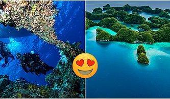 250 Adadan Meydana Gelen Cennet Gibi Bir Cumhuriyet: Palau Adası