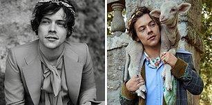 Yeni Hali Şaşırtıyor: Harry Styles'ın Çiftlik Hayvanlarıyla Gerçekleştirdiği Moda Çekimi