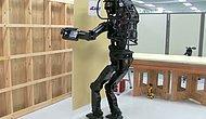 Bu Da Oldu: Japon Bilim İnsanları Alçıpan Yapan İnsansı Robot Yaptılar