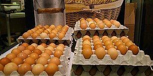 Yumurtaya Zam Kapıda: 'Elimizde Bir Aylık Ambalaj Stoku Kaldı'
