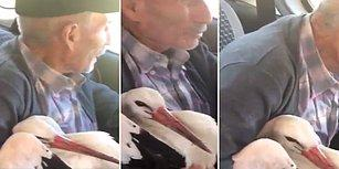 Yaralı Hayvana Yardım Elini Uzatan 70 Yaşındaki Salih Dededen İnsanlık Dersi