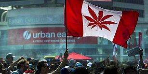 Dünyadaki İkinci Ülke Oldu: Kanada'da Keyif Amaçlı Esrar Kullanımı Artık Serbest