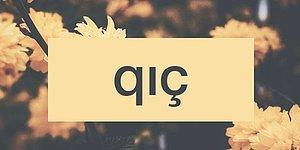 Bu Azeri Türkçesi Kelimelerin Anlamlarını Bilebilecek misin?