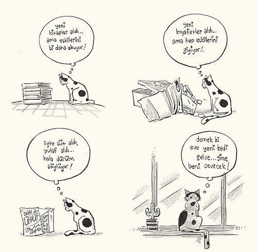 Evde Cat Başına Kedi Arifenin Ev Hayatına Tebessüm Ederek Tanık Olacağınız 13 Karikatür 77