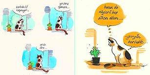 Evde Cat Başına! Kedi Arife'nin Ev Hayatına Tebessüm Ederek Tanık Olacağınız 13 Karikatür
