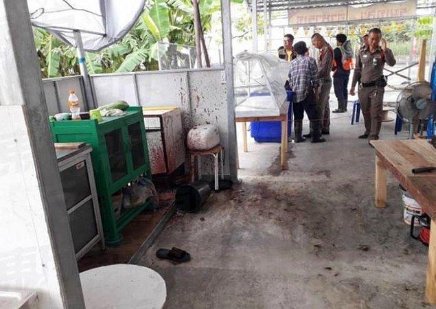 Tayland'da vejetaryen müşterilerin yemeklerine insan eti konuldu.