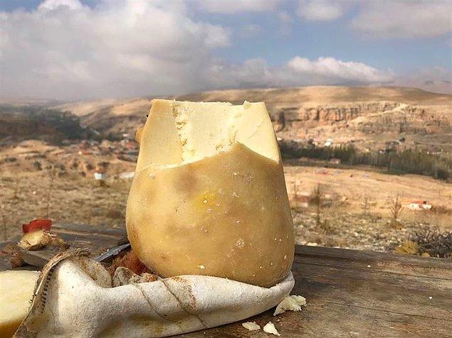 'Mağaranın kapasitesi 50 ton ancak piyasada bu isimle 800 tonun üzerinde peynir satılıyor'
