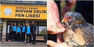 Okul İdaresi, Tavuklarından Ayrılmak İstemeyen Öğrenci İçin Bahçeye Kümes Yaptırdı