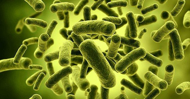 Vücudumuzda yaşayan mikrop topluluklarının yani 'mikrobiyota'nın tamamının gen yapısına 'mikrobiyom' adı veriliyor. Mikrobiyom genlerin toplamı kendi genlerimizden 100 kat fazla!