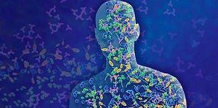Sadece %43 İnsanız! Karakterimizi, Duygularımızı, Yeme Alışkanlığımızı Etkileyen Mikroorganizmalar