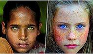 'Peki Bunlar Renkli Gözse Bizimki Ne Oluyor?' Diye Düşündürten Birbirinden Güzel 35 Renkli Göz