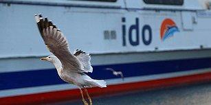 İç Hat Seferlerini Durduracağını Açıklamıştı: İDO Üç Gemisini Satışa Çıkardı