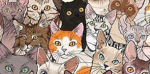Kedi Sahiplenmek İsteyen Herkesin Muhtemelen Yaşayacağı Durumları Çizimleriyle Anlatan Sanatçıdan 20 Enfes İllüstrasyon