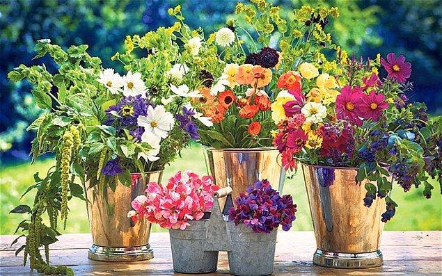 7. Evinize gelen çiçekleri daha uzun süre canlı tutar.