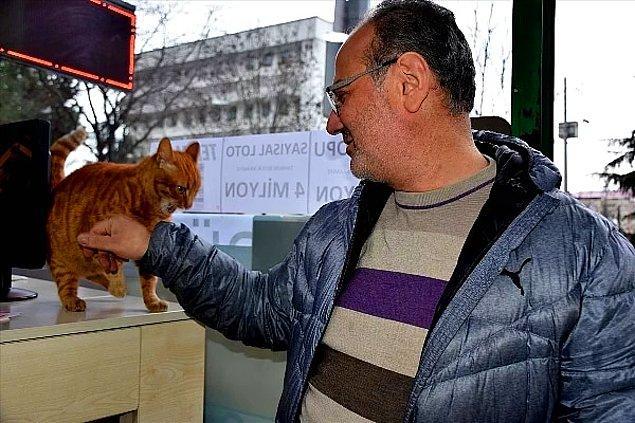 Umut var, hep olacak! Sigarayı bırakınca elinde kalan parayı 6 yıldır sokaktaki canlara harcayan Mehmet Serdar Nuhoğlu da burada!