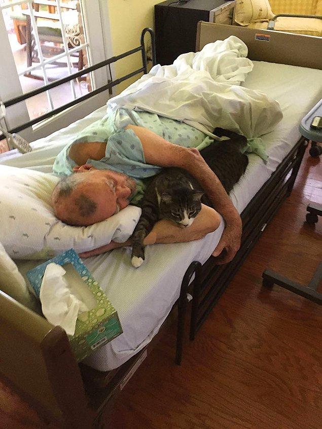 """15. """"Babam geçen hafta kedisi Brady ile ev bakımında. Perşembe akşamı savaşı kaybetti."""""""