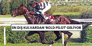 Onun Gibisi Gelmedi! Rekoru Kırılamayan Efsane At: Bold Pilot