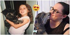 Barınaktan Sahiplendiği Yaşlı Köpeğin Küçükken Baktığı Köpek Olduğunu Öğrenen Kadın 😍