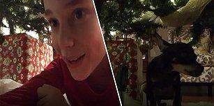 Yılbaşı Ağacının Altına Kamera Yerleştirerek Noel Baba'yı Yakalamayı Hayal Eden Gencin Kaydettiği Efsane Görüntü!