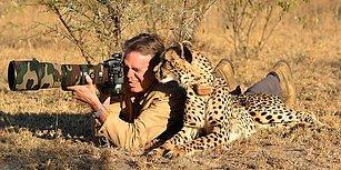 Onları Hiç Böyle Görmediniz! Tatlı ve Meraklı Hareketleriyle Fotoğrafçıların İşlerine Burnunu Sokan Vahşi Hayvanlar