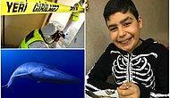 13 Yaşındaki Nizamettin'in Ölümünde Mavi Balina Şüphesi: 'Oğlum Bir Oyun Yüzünden İntihar Etti'