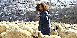 Şehirden Köye Göç Etti: Üniversiteden Mezun Olup Çobanlığı Seçen Duran Bircan ile Tanışın!