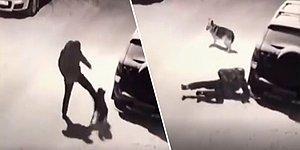 Karlı Havada Köpeğe Attığı Tekme Sonrası Anında İşleyen Karma İle Sümük Gibi Yere Yapışan Adam