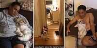 'Eve Köpek Alalım' Teklifine Karşı Çıktıktan Sonra Babanın Sahiplenilen Köpekle Olan Muhteşem İlişkisi