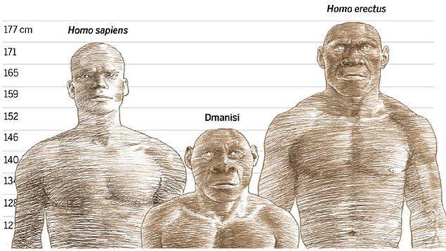 Peki, bazı atalarımızın diğerlerine göre daha başarılı olmasının altında hangi sebepler yatıyordu?