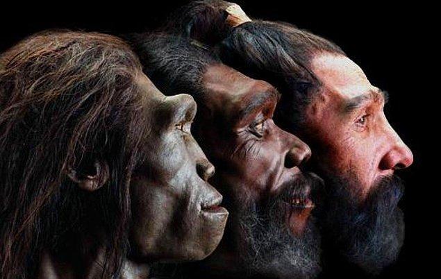 Sonuç olarak, sembolik bilginin paylaşımı evrimsel başarımızda büyük rol oynadı.