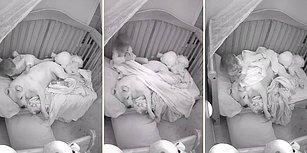 Beşikte Birlikte Uyuduğu Köpek Dostunun Üstü Açık Uyumasına Gönlü Razı Olmayan Çocuğun İçinizi Isıtacak Görüntüleri!