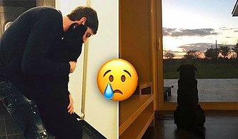 Gerçek Dost! Emiliano Sala'nın Köpeği Nala Arjantinli Futbolcunun Eve Dönmesini Bekliyor