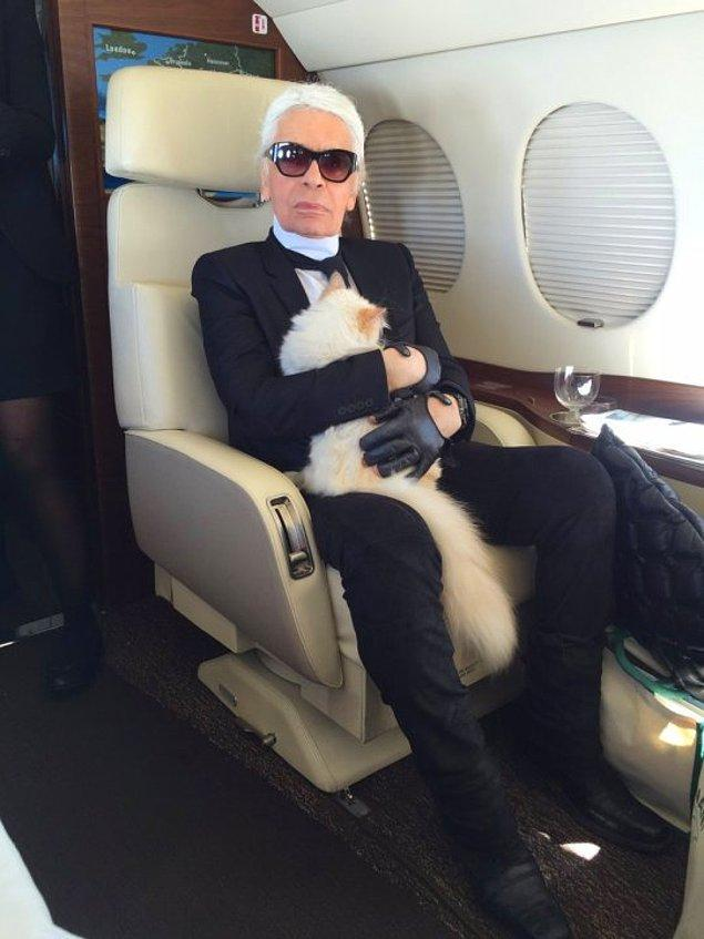 Karl kedisi için hayatının tek aşkı olduğunu ve yasal olsa onunla evleneceğini söylüyordu.