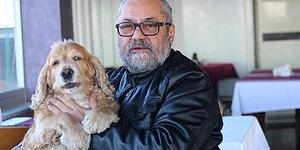 Örnek Olması Dileğiyle: Giresun'da Restoran Sahibi Ahmet Bal, Bir Haftalık Gelirini Felçli Hayvanlara Bağışladı