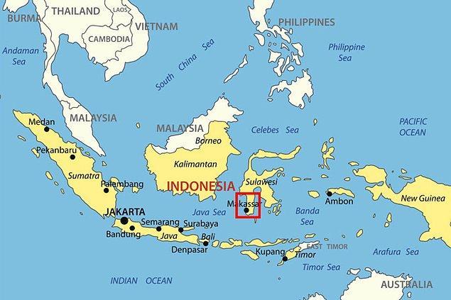Trojalılar Sulawesi bölgesinin güneyinde yaşıyorlar.