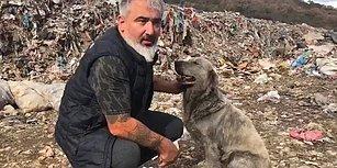 Bilecik'te Çöplükten Kurtardıkları Köpeğin Yeniden Hayata Tutunmasını Sağlayan Güzel İnsanlar