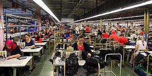 Dünya Bankası Raporu: Sadece 6 Ülke Kadınlara Eşit Ekonomik Haklar Veriyor, Türkiye 85. Sırada