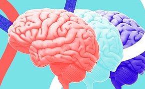 Sakın Aklınızdan Geçirmeyin! Yapılan Araştırmada Nörologlar İnsanların Düşüncelerini Okumayı Başardı