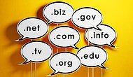 Domain Sorgulama ve Domain Almak İsteyenlerin Bilmesi Gereken 11 Şey