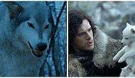 Game of Thrones'taki Kurtlar Tüm Sezon Boyunca Stark Hanesi'nin Kaderini Nasıl Belirledi?