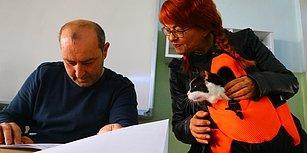 Kedisini Getiren de Var, At Sırtında Gelen de: Tüm Yurttan Seçim Manzaraları