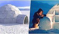 Eskimoların Zorlu Hava Şartlarına Dayanmak İçin Yaptığı Kardan Ev İglo Nasıl Erimeden Kalabiliyor?