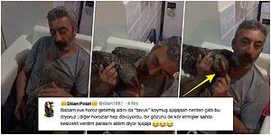 Dayak Yediği İçin Ölmek Üzere Olan Horozu Kurtaran ve Adını 'Tavuk' Koyan Güzel Yürekli Hayvansever Piro Amca!