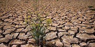 Su Fakirliği Sandığın Kadar Uzak Değil... Bu Test Senin Su Ayak İzini Hesaplıyor!