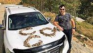 Belediye Başkan Yardımcısı Kuşları Öldürüp Üç Hilal Şeklinde Dizdi: 'Av Sonrası Klasik Fotoğraflardan Biri'