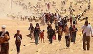 Hollanda Ezidileri Geri Gönderme Kararı Aldı, BM Tepki Gösterdi: 'Irak Hala Güvenli Değil'