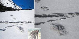 Hindistan Ordusu Resmi Twitter Hesabından Himalayalar'da Bulduğu 'Yeti Koca Ayak' İzlerini Paylaştı!