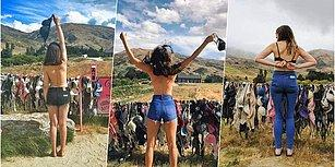 Memelere Özgürlük! Yoldan Geçen Kadınların Sütyenlerini Çıkarıp Astıkları Yeni Zelanda'da Bulunan Farkındalık Çiti