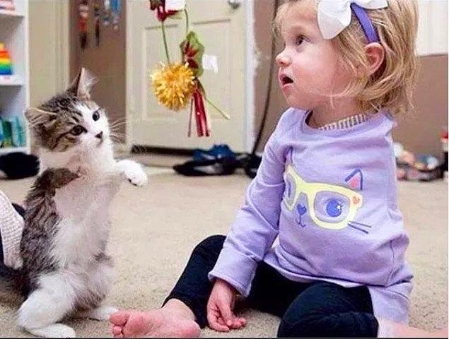 16. Kanser hastası olan ve bir kolunu kaybeden küçük kıza Noel için onun gibi olan bir kedi hediye edilmiş.